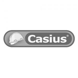 casius_logo_1